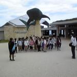 海洋博記念公園(美ら海水族館)